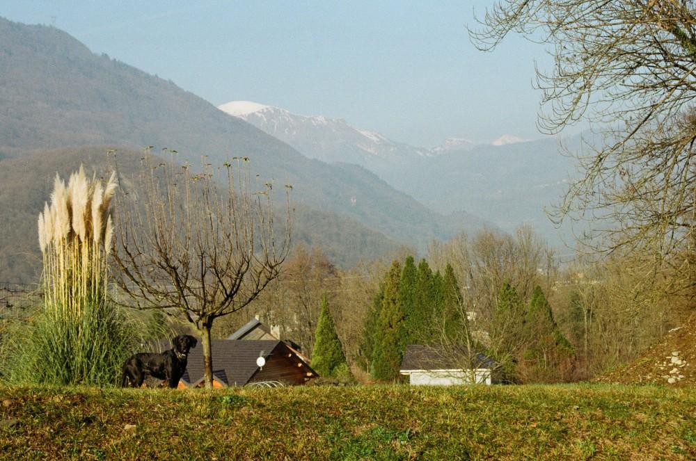 http://www.magalibrueder.fr - La Colonie