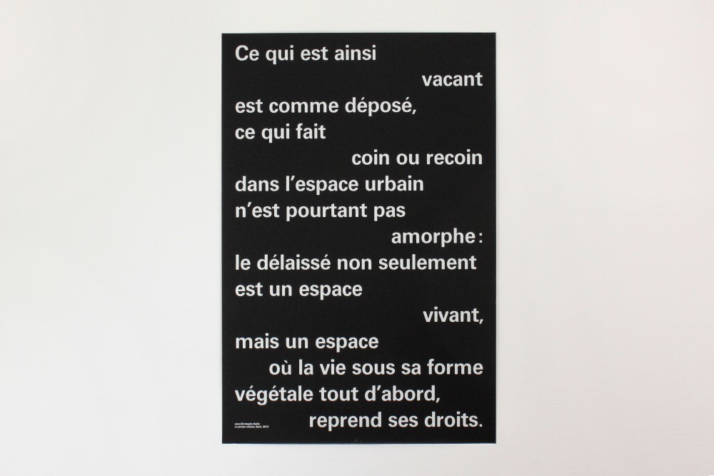 http://www.magalibrueder.fr - Les délaissés
